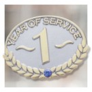 Years of Service Safety Stock Lapel Pin with military clutch - SRB